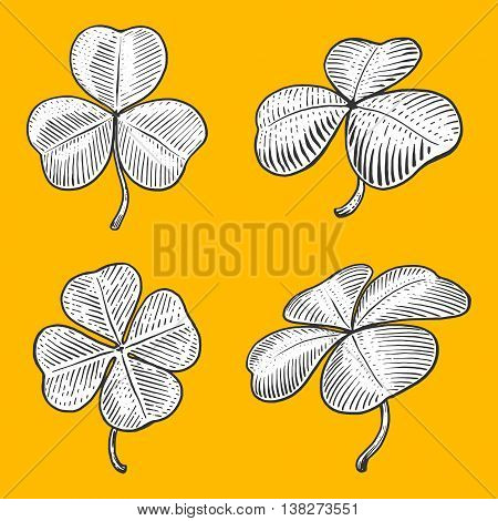 Clover leaf engraving style vector illustration. Scratch board style imitation