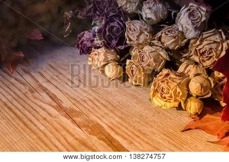 Dried yellow roses lying on rustic wooden background