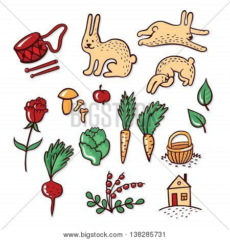 Set of objects that rabbit loves: vegetables, berries and mushrooms