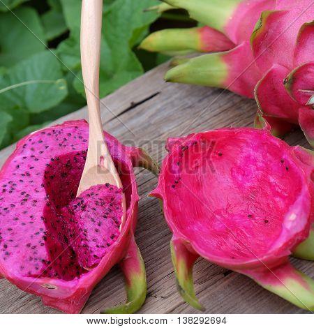 Dragon Fruit, Tropical Fruits, Vietnam Agriculture