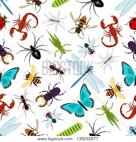 Colorful insect animals seamless pattern. Coccinellidae or ladybug, lady beetle and dragonfly, lucanus cervus and wasp or bee, araneus orb spider and wood ant, grasshopper and stag beetle