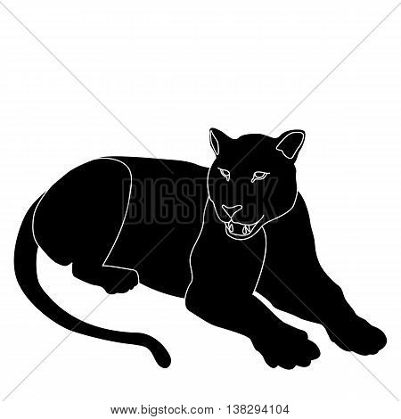 leopard lying black silhouette vector illustration isolated