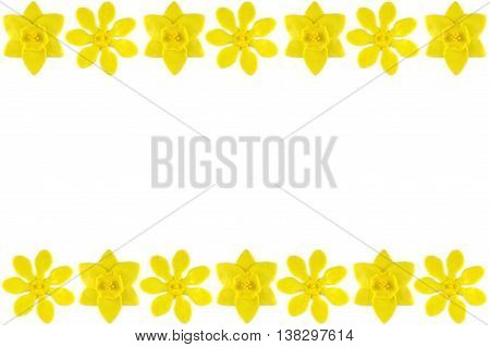 Modelling clay daffodil and golden gardenia flower on white background