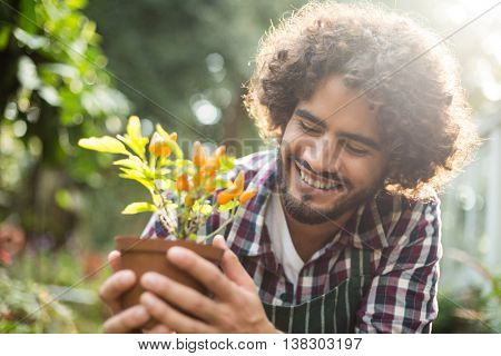 Close-up of male gardener holding potted plant outside greenhouse