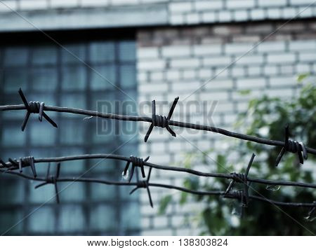Steel barbed wire on the fence in jail