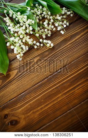 blooming lily of the valley on a wooden background