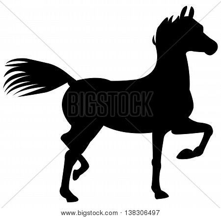 black horse silhouette animals black cavalry circus