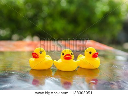 Duck Dolls, Toys For Children, On A Table Made Of Wood And Background Bokeh Tree. (select Focus).