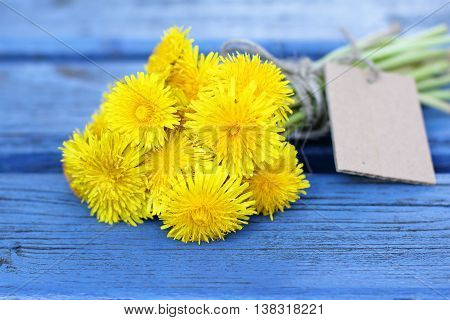 bouquet of dandelions on the sunny blue bench