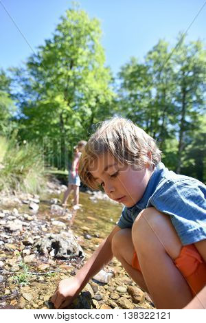 Little boy looking for tadpoles in river