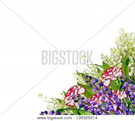 Bouquet of flowers carnation. isolated on white background.
