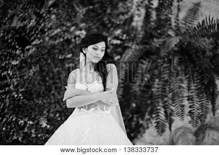 Temptation Model Brunette Bride At Exciting Wedding Dress Backgrond Fern Vegetation