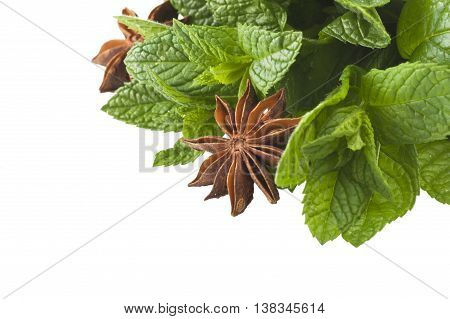 cinnamonstar anise mintl icorice close up on the white