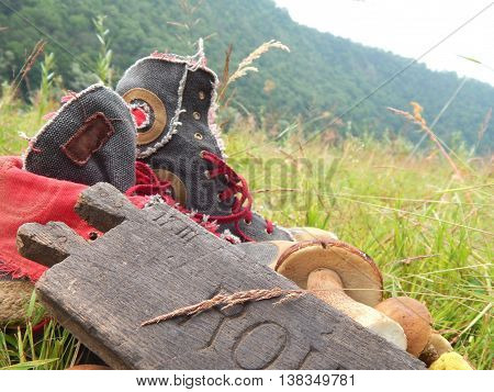 Fresh mushrooms, shoes and wooden board on background of mountains