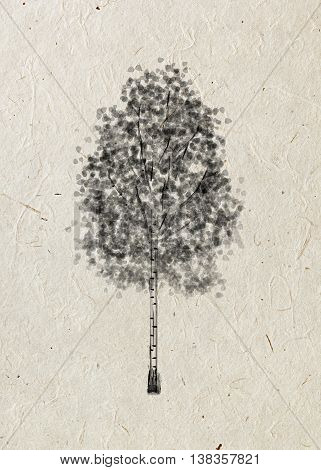 Birch. Drawing tree on a beige rice paper. Black silhouette wood.