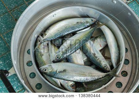 Fish In Pot For Preparing Cooking , Thai Food.