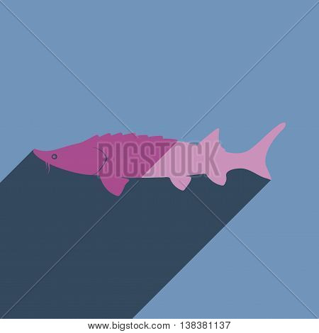 Flat icons with shadow of sturgeon. Vector illustration
