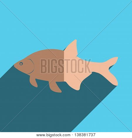 Flat icons with shadow of bream. Vector illustration