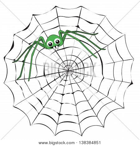 Simple cartoon spider web and green spider on a white background.