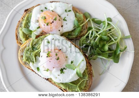 Poached eggs with avocado and sunflower sprout on sourdough toasts