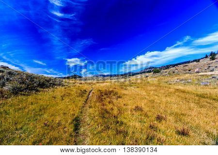 A wide angle view of a trail under a blue sky in Yellowstone National Park