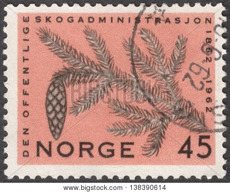 MOSCOW RUSSIA - JANUARY 2016: a post stamp printed in NORWAY shows a pine branch the series