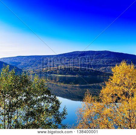 Horizontal Vivid Autumn In Norway Background Backdrop
