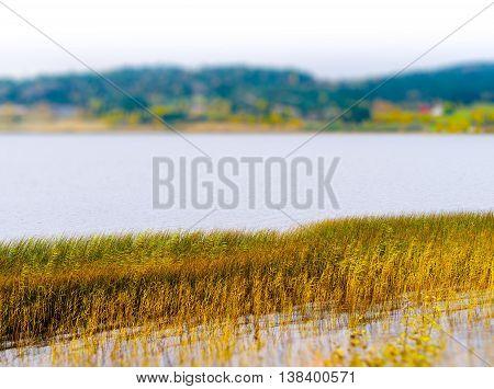 Horizontal vivid Norway backwater landscape background backdrop