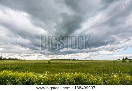 Stormy clouds over the green field. Summer landscape.