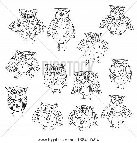 Funny owl silhouettes outline with different feathering pattern on head and wings. Wise birds with amazed or shocked, stunned or astound, cute or wondering look