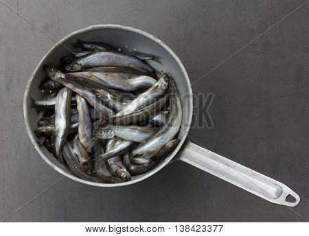 raw fish capelin in the old aluminum colander on a gray background top view