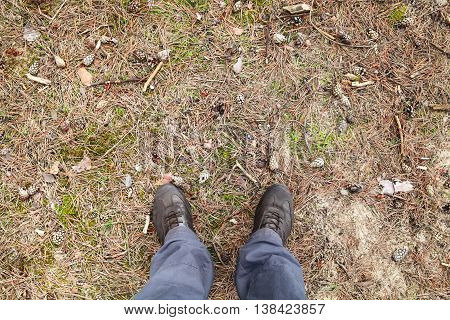 Male Feet In Brown Shoes On Forest Ground