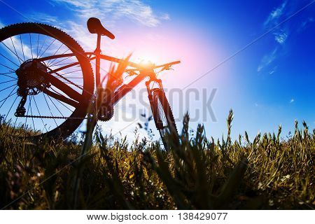 bicycle in meadow during sunset with shallow dept of field