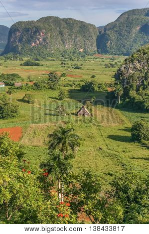 Valle Vinales In The West Of Cuba