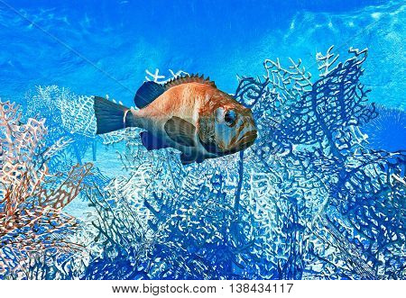 Fish on reef - 3d illustration