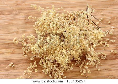 Sambucus nigra elderberry herb with dried flowers on wooden background.