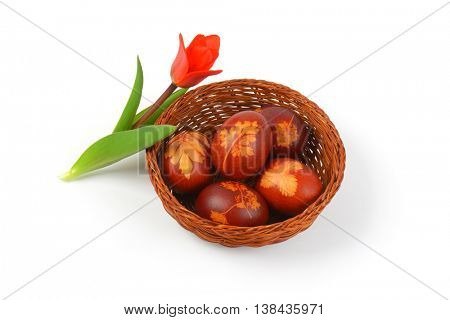 basket of Easter eggs decorated with fresh leaves and boiled in onion peels and tulip on white background