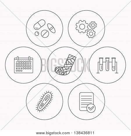 Broken foot, bacteria and medical pills icons. Lab bulbs linear sign. Check file, calendar and cogwheel icons. Vector