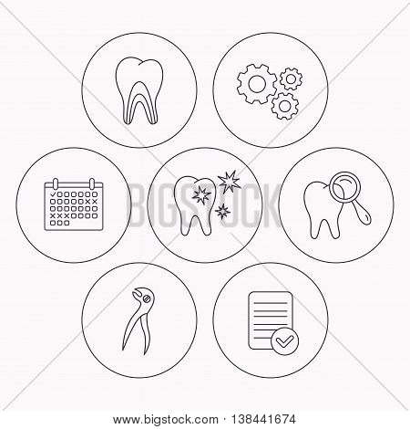 Healthy teeth, dentinal tubules and pliers icons. Dental diagnostics linear sign. Check file, calendar and cogwheel icons. Vector