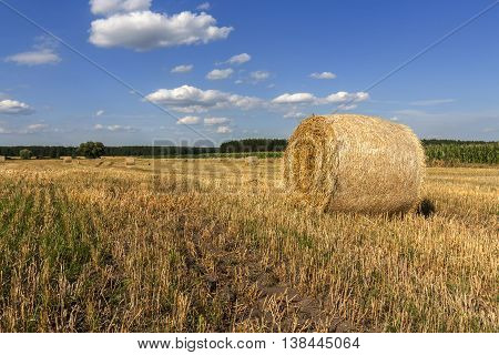 Straw Bales In Fields Farmland With Blue Cloudy Sky