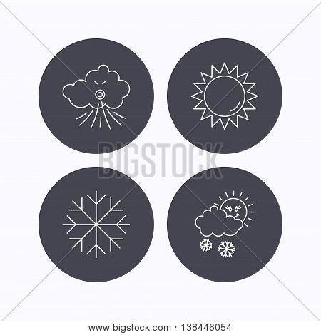 Weather, sun and snow icons. Wind and snowflake linear signs. Flat icons in circle buttons on white background. Vector