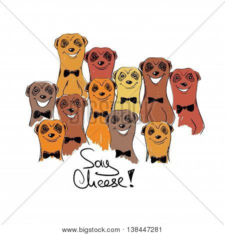 Colorful sketch illustration with group of funny smiling meerkats. Meerkats posing on camera.