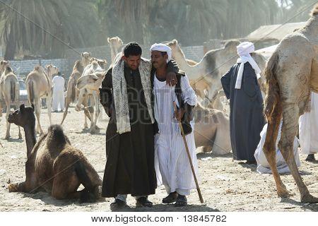 DARAW, Egipto - 29 de diciembre: Pueblo árabe es negociación en el mercado semanal de camellos y ganado en Decem