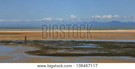 Marahau beach at low tide. New Zealand.