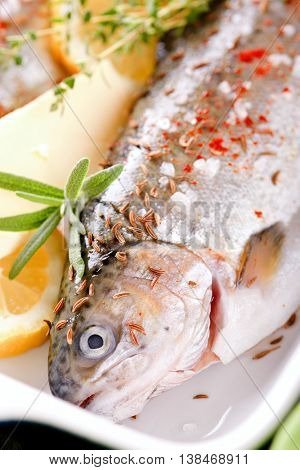 Detail Of Trout In Ceramic Pan With Rosemary And Buter With Lemon
