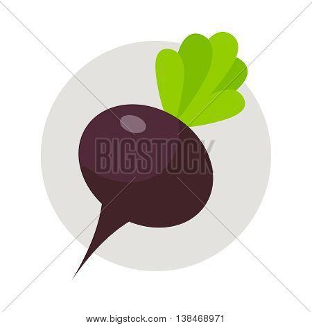 Beet flat icon vegetable harvest vector illustration