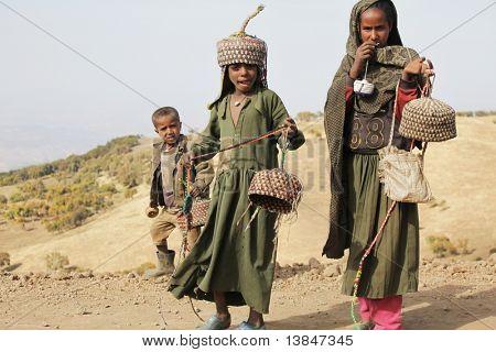 SIMIEN MTNS, Etiopía - 12 de enero: Amainando los niños venden artesanías en montañas, en Ja