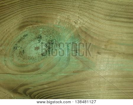 Old wooden texture in light brown and green tonality