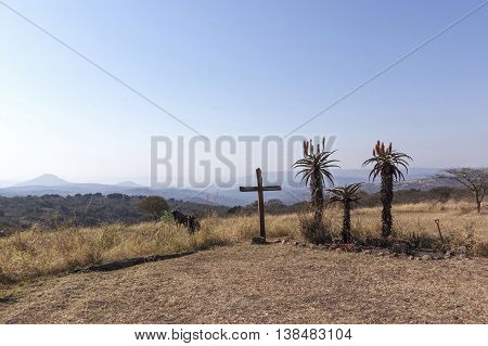 Wood Cross On Hilltop With Three Aloe Plants Depicting Crucifixion