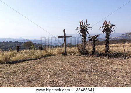 Large Wood Cross In Arid Dry Landscape